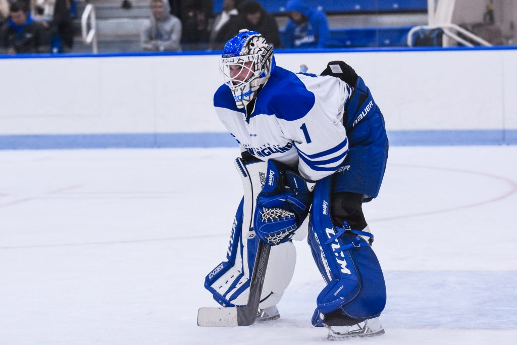 College hockey game picks, D-III East: February 28, 2020