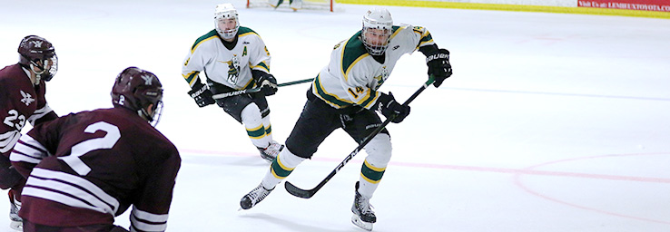 D-III West Weekend Hockey Wrap: Green Knights roll over Auggies