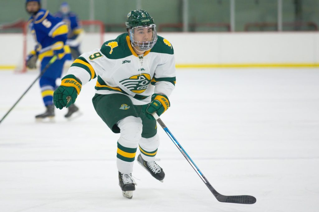 This Week in WCHA Hockey: Alaska Anchorage has playoff fate in own hands as Seawolves prep for Bemidji State